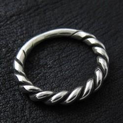 Ring Polen
